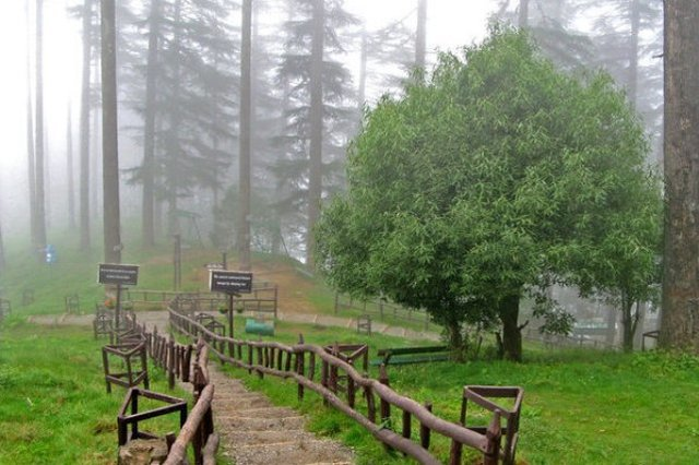 Dhanaulti View